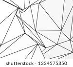 asymmetrical texture with... | Shutterstock .eps vector #1224575350