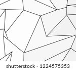 asymmetrical texture with... | Shutterstock .eps vector #1224575353