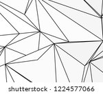asymmetrical texture with... | Shutterstock .eps vector #1224577066