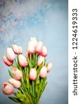 bouquet of tulips on a blue... | Shutterstock . vector #1224619333