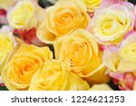natural roses delicate yellow...   Shutterstock . vector #1224621253