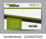 flyer  brochure  billboard... | Shutterstock .eps vector #1224625510