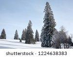 winter in schwarzwald.high...   Shutterstock . vector #1224638383