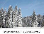 winter in schwarzwald. high...   Shutterstock . vector #1224638959