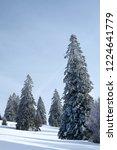 winter in schwarzwald. high...   Shutterstock . vector #1224641779