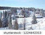 winter in schwarzwald. high...   Shutterstock . vector #1224642313