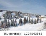 winter in schwarzwald....   Shutterstock . vector #1224643966