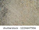 poured concrete sidewalk close... | Shutterstock . vector #1224647506