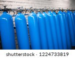 oxygen cylinder with compressed ... | Shutterstock . vector #1224733819