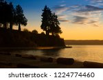 trees silhouette along the...   Shutterstock . vector #1224774460