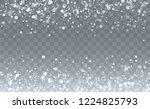christmas snow flakes...   Shutterstock .eps vector #1224825793