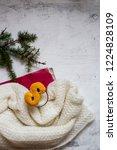 swedish christmas. gluten free...   Shutterstock . vector #1224828109