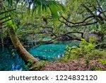 an arched wooden footbridge...   Shutterstock . vector #1224832120