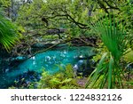 an arched wooden footbridge...   Shutterstock . vector #1224832126