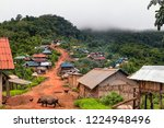 Small photo of Main Road along Mountaintop Ridge in Traditional Akha Hill Tribe Village. Livestock Animals Freely Wandering Street in Small Ethnic Village in Nam Ha Protected Area. (Luang Namtha, Laos).