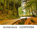 The old Columbia River Gorge highway, Columbia River Gorge National Scenic Area, Oregon