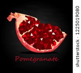 pomegranate hand drown vector... | Shutterstock .eps vector #1225019080