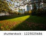 city park along coal harbor in...   Shutterstock . vector #1225025686