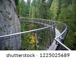 capilano cliff walk  a...   Shutterstock . vector #1225025689