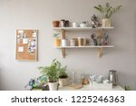 pots with various houseplants... | Shutterstock . vector #1225246363