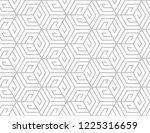 the geometric pattern with... | Shutterstock .eps vector #1225316659