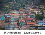 tbilisi  georgia   november... | Shutterstock . vector #1225382959
