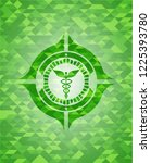 caduceus medical icon inside... | Shutterstock .eps vector #1225393780