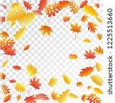 oak  maple  wild ash rowan... | Shutterstock .eps vector #1225513660