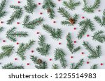 fir branches with red berries... | Shutterstock . vector #1225514983