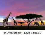 south africa of silhouette... | Shutterstock . vector #1225755610