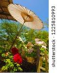japanese umbrella and flower | Shutterstock . vector #1225810993