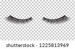 false eyelashes. mascara... | Shutterstock .eps vector #1225813969
