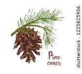 realistic botanical ink sketch... | Shutterstock .eps vector #1225825906