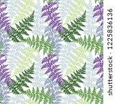 fern frond herbs  tropical... | Shutterstock .eps vector #1225836136