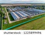 large pig farm. evening... | Shutterstock . vector #1225899496