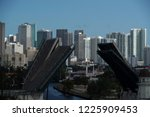miami florida open drawbridge... | Shutterstock . vector #1225909453