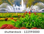 Beautiful View Of Flowers And...