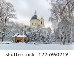 cathedral of saints peter and... | Shutterstock . vector #1225960219