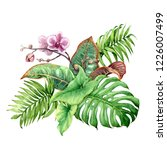 hand drawn tropical plants.... | Shutterstock . vector #1226007499