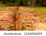 yellow plastic pipe line for... | Shutterstock . vector #1226036059