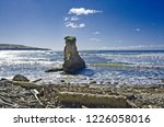 a solitary rock juts out of the ...   Shutterstock . vector #1226058016