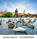 view on charles bridge and... | Shutterstock . vector #1226066806