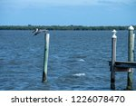 sebastian inlet and waterways | Shutterstock . vector #1226078470