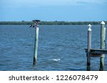 sebastian inlet and waterways | Shutterstock . vector #1226078479