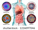 human pathogenic viruses... | Shutterstock . vector #1226097046