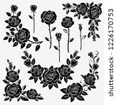 collection of roses on a white... | Shutterstock . vector #1226170753