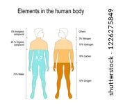elements of the human body. the ... | Shutterstock .eps vector #1226275849