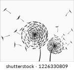 dandelion flower isolated on a... | Shutterstock .eps vector #1226330809