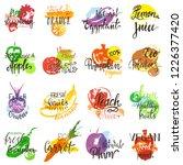 fruits vector fruity eco food... | Shutterstock .eps vector #1226377420