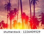 copy space of silhouette... | Shutterstock . vector #1226409529